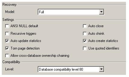 Свойства базы данных. Закладка 'Options'.