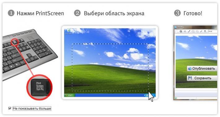 Сделать скриншот с помощью QipShot очень легко.  Ниже на скриншоте это показано.