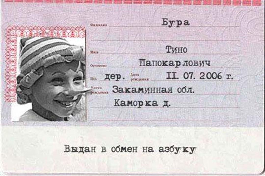 Паспорт картинки смешные